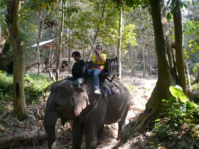 Elephant khaen ride