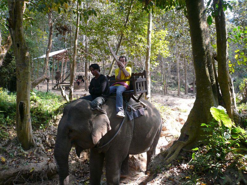 Elephant khaen ride