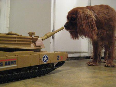 Benny & The Tank