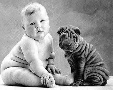 Baby_bulldogge