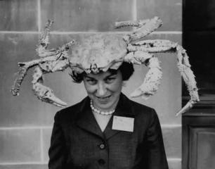 Mut-head-lice