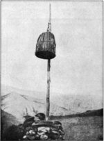 Afghan_cage_of_death_small